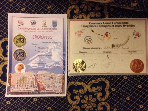 Les deux premiers concours,un à Istres,une médaille d'or et une médaille de bronze puis au régional de Sanary-Sur-Mer,une médaille d'or et une médaille d'argent.Prochain concours le National