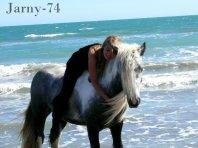 Votre cheval et vous .