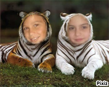 moi et ma cousine serena an tigre