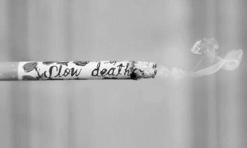 smoker life before you smoke it