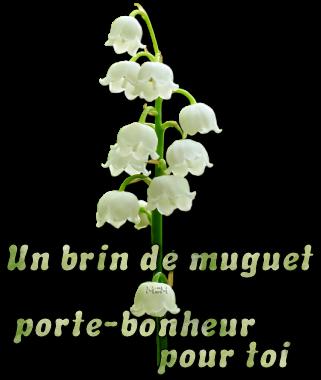 Articles de petithiboux tagg s poeme muguet chez petithiboux - Un brin de muguet porte bonheur ...