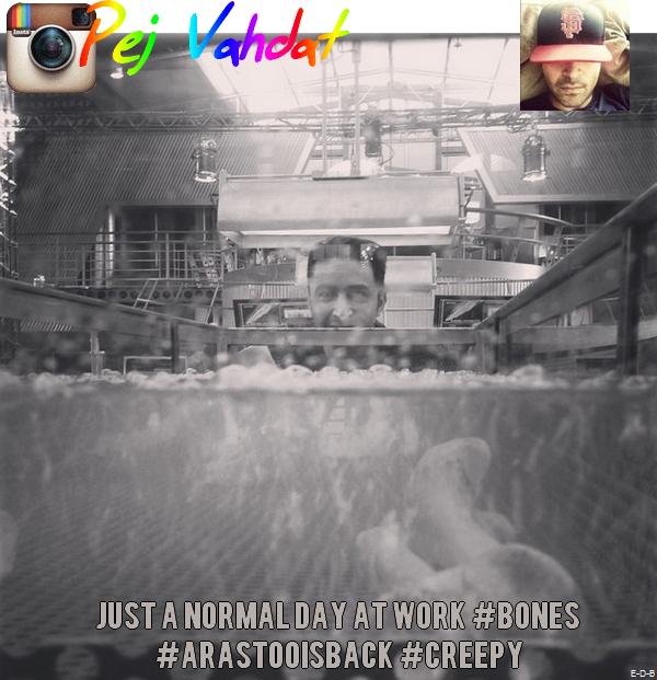 Twitter ♥ Facebook ♥ Instagram