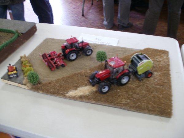 expo polincove 2012