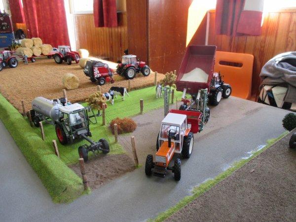 expo polincove 2015