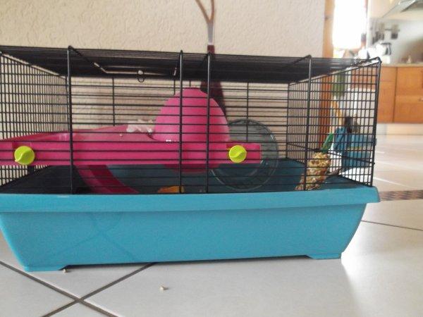 Et voilà sa cage !
