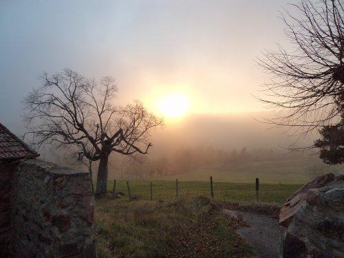 Un matin en automne