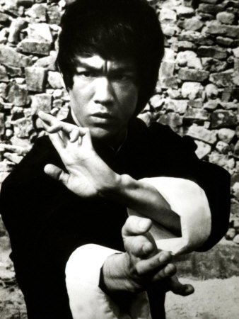 La Biographie de Bruce Lee (Biography of Bruce Lee)