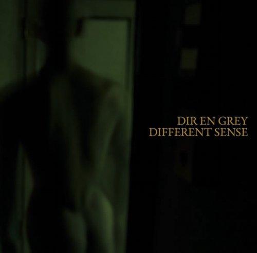 Single DIFFERENT SENSE (22 juin 2011)~