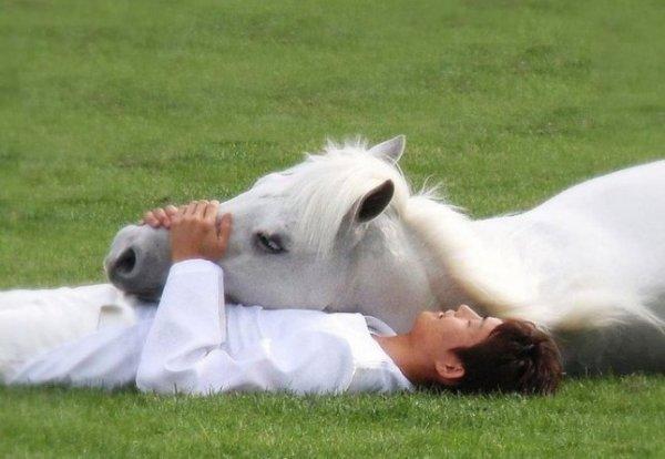 Le plus dur avec les chevaux de gagner leurs confiance, c'est dur de s'imaginer qu'un animal de plus 500 kg puisse accepter un être plus petit que lui. La confiance entre son cheval et son cavalier sans dôute pour moi le plus important.. ♥