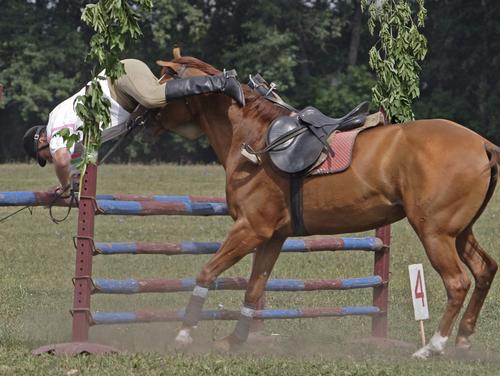 Tout le monde est tomber a cheval même les meilleurs ont passe tous par là.. :p ♥