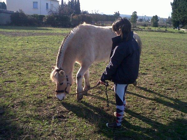 Y as les passionnés d'équitation, & y as nous, les passionnés de chevaux.. ♥