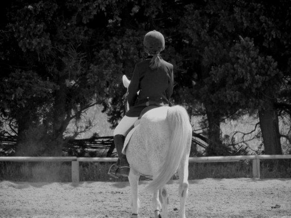 Mon petit étalon.. ♥