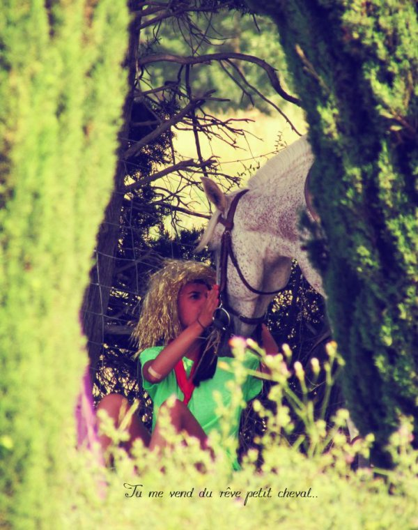 Ce cheval est tout simplement, magique.