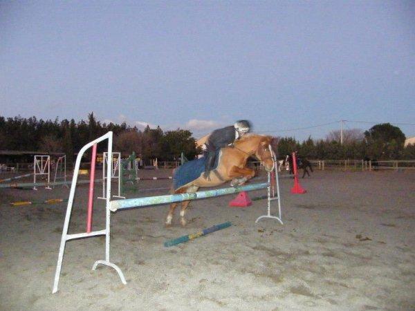 Un poney content de sauter, et une petite ligne. Le dernier est a 90cm.