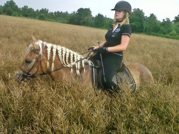 Quel courage Poney ♥