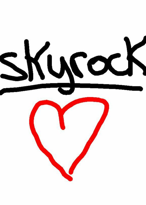 J aime trop skyrock