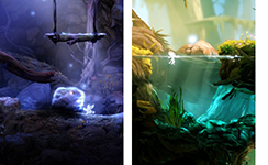 ~Ori and the blind Forest