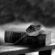 Les livres que vous me conseillez !