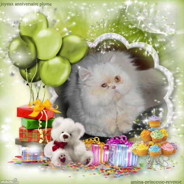 joyeux anniversaire plume !!!!