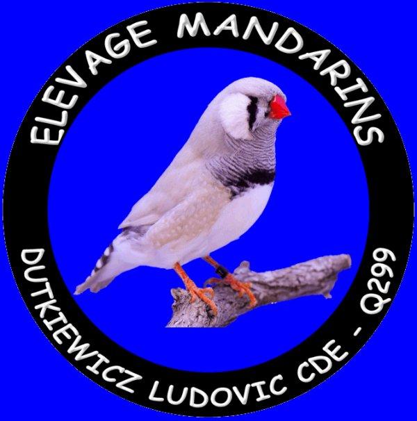 ELEVAGE DUTKIEWICZ LUDOVIC