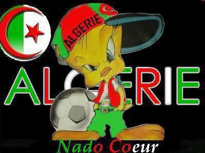 algerie aime <3