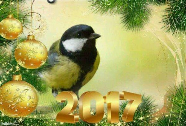 """Regardez """"Joyeux Noël et bonne année 2017!"""" sur YouTube"""