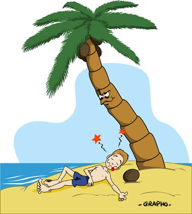 Les chutes de noix de coco