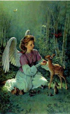 L'existance des fées!!! elles sont les anges gardiens des animaux et de la nature