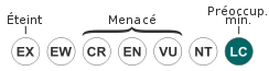 Le Fennec