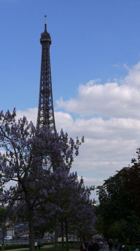 La tour eiffel <3