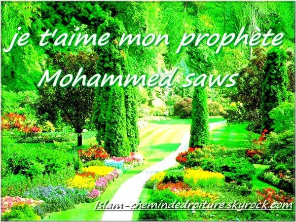 quel est le hadith le plus beau selon vous (celui que voux préférez)?