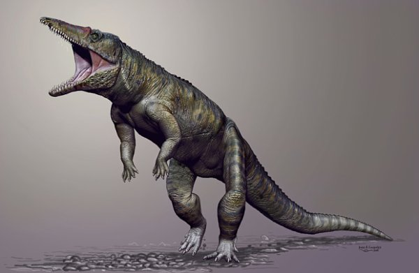 Le terrifiant ancêtre des crocodiles découvert aux Etats-Unis.