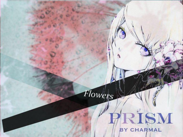 Montage: Princesse des Sakura
