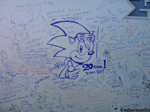Japan Expo 2011 ( 12èmé Impact) : Joyeux Anniversaire Sonic!!