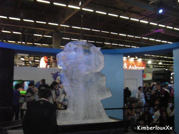 Japan Expo 2011 : Joyeux anniversaire Sonic! (PART 2)