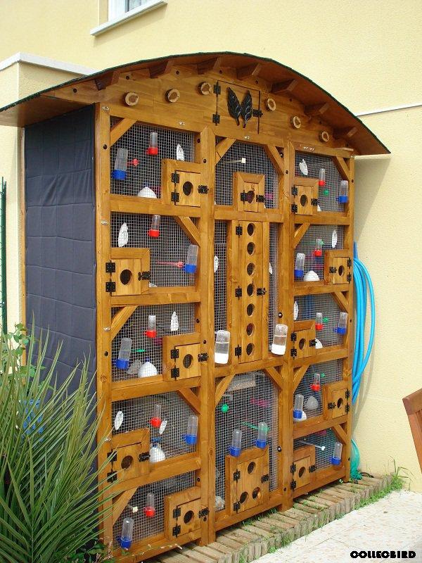 Voliere exterieure en bois collecbird for Voliere en bois exterieur