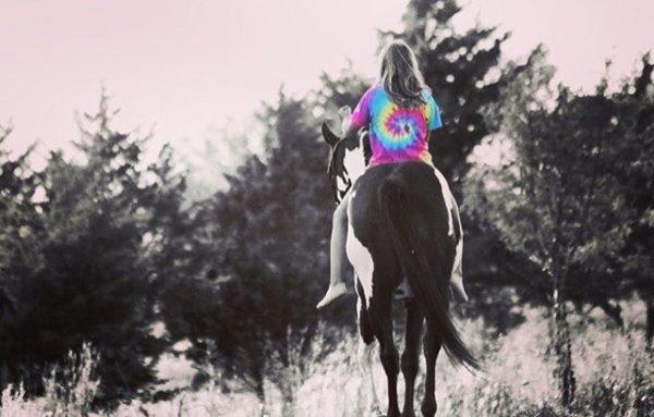 Je serais un peu absente sur le blog et je vais moin parler de mes chevaux je suis beaucoup désolée