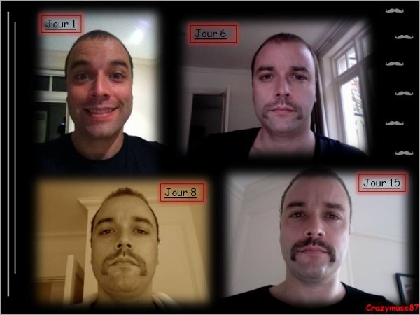 À vos moustaches !