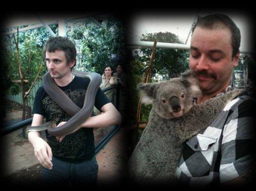 Une visite en Australie pour Muse