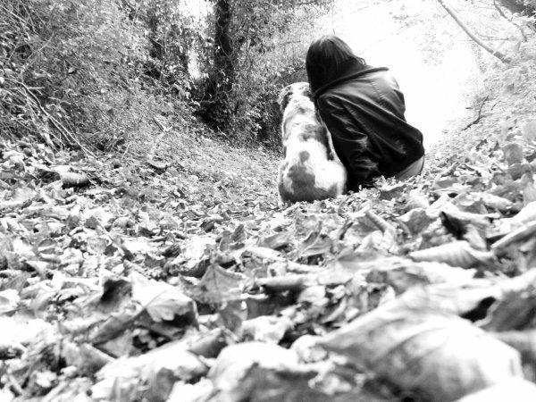 Le chien c'est la vertu qui ne pouvant se faire homme, s'est faite bête.