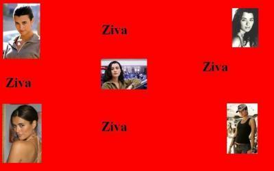 Fond d'écran Ziva