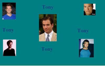 Fond d'écran Tony