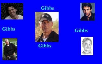Fond d'écran Gibbs