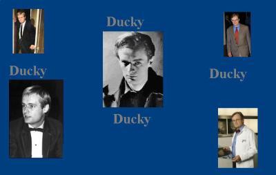 Fond d'écran Ducky
