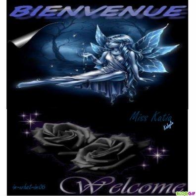 - ♥•.¸ (´*•.¸ _bienvenus__ ¸.•*´) ¸.• •♥, ;)