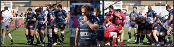 Samedi 24 Février - Castres Olympique-Montpellier Hérault Rugby Club