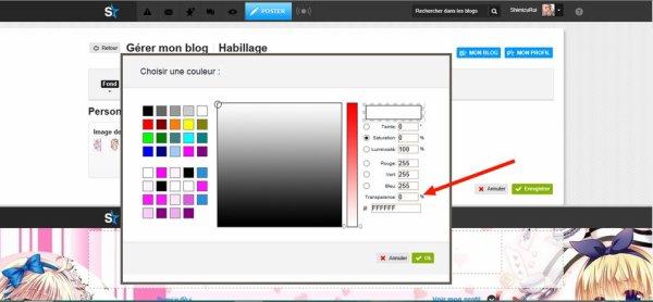 Comment changer les couleurs de son Blog/Profil ? La réponse ici ! ^v^