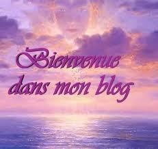 mn blog