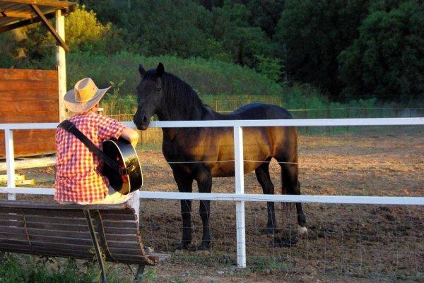 moi et mon cheval et ma guitare