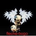 Photo de fleche-bogo-raval